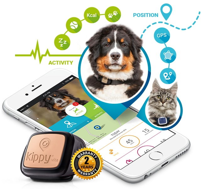 Track your pet nl