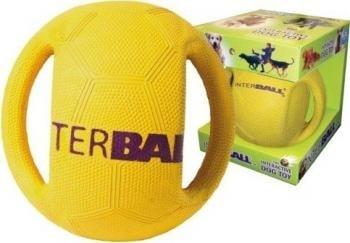 Výsledek obrázku pro InterBall míč pro psa