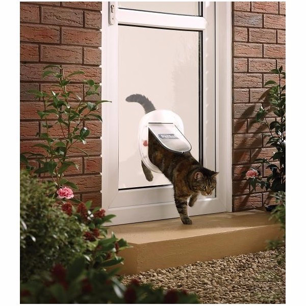Pet Door Staywell 270 Transparent Doors For Cats And Dogs
