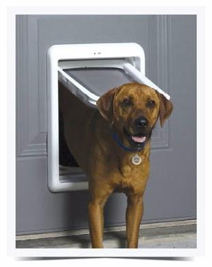 PetSafe Passport™ Intelligent dvířka pro psy a kočky bílá
