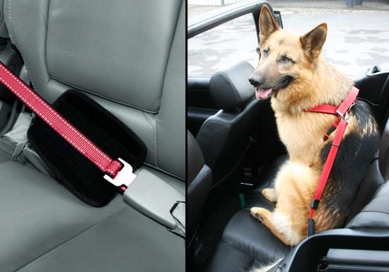 Walk and Drive - pás do auta pro psy s vodítkem