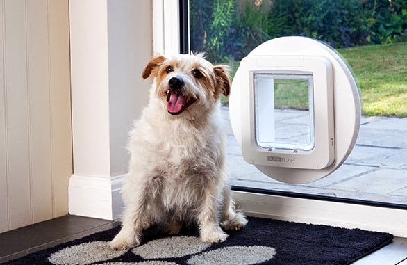 Dog Doors Sureflap With Microchip Doors For Cats And Dogs