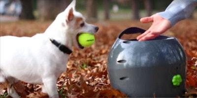 PetSafe automatický vrhač míčků pro psy, 9 vzdáleností, 2 míče