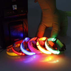 Reedog rechargeable glowing collar for small, mid-size and big dogs