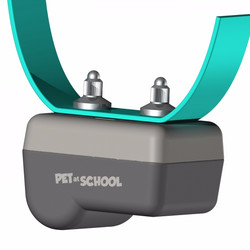 Pet at School Bark Pulse