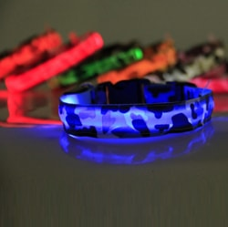 Reedog glowing collar Camo for small, mid-size and big dogs