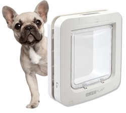 Dog doors SureFlap with microchip