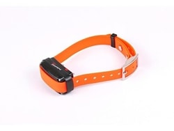 Elektronisches Trainingshalsband Dogtrace d-control professional 2000 ONE - Orange