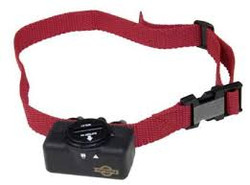 Antibarking collar PetSafe