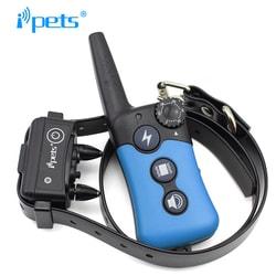 Petrainer PET619 - pro 2 psy