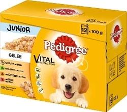 Pedigree Junior kapsičky Vital 12 x 100 g