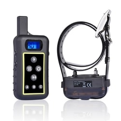 Do you need electronic collar to train your dog?